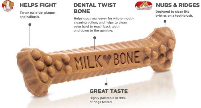 04_How-to-bursh-Dog-teeth