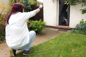 08_Dogs_Discipline_Leave_Dog_Behind