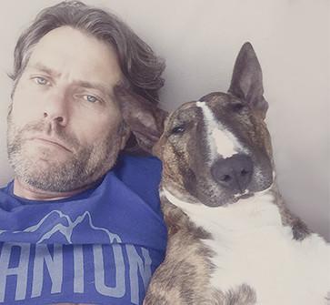 http://lulubully.basestar59.com/wp-content/uploads/sites/4/2016/02/John_Bishop_Tigger_Bull_Terrier_2015.jpg