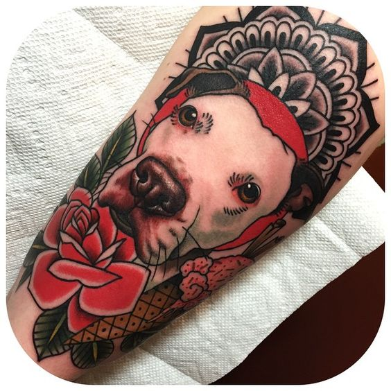 pitbulltattoo9