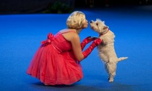 Doing musicals and dancing with dog