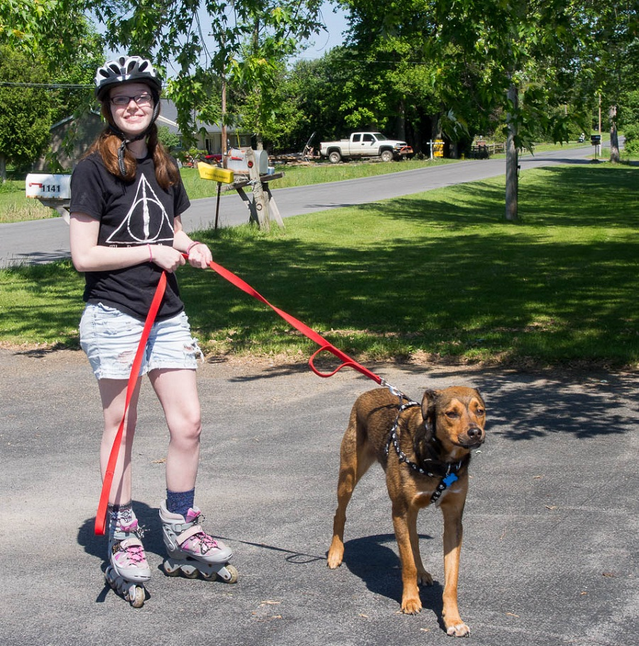 Rollerblading, this pleasurable and engaging outdoor activity