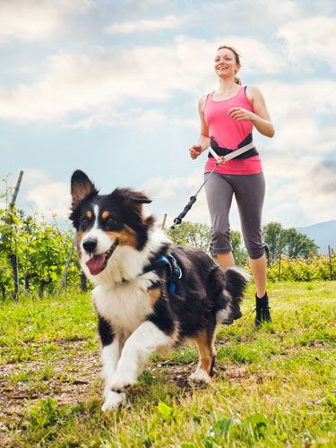 Doing physical activities with your dog makes you healthier!