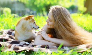 Secrets that dogs make us happy