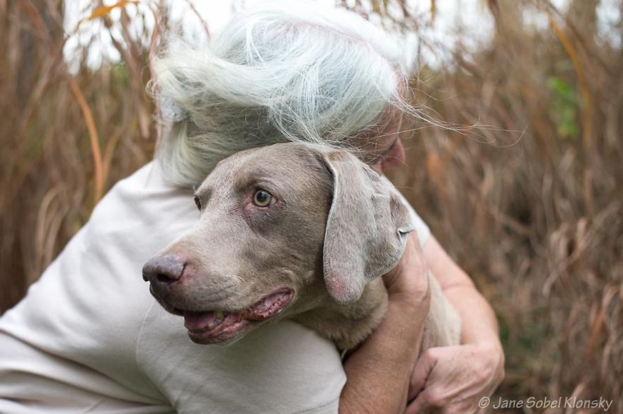 Dogs don't care about our age