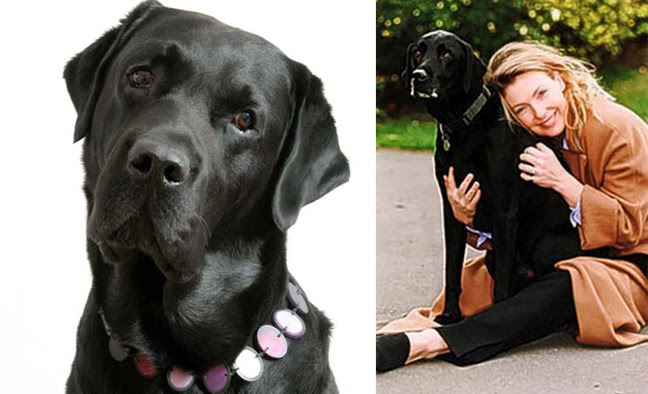 Jasper adopted from Diana Myburgh is one of the richest dogs in the world
