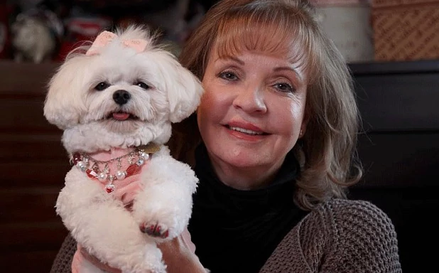 Trouble, Maltese dog who inherited 12 million dollar