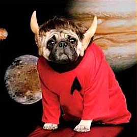 The Rodenberry dogs inherited millions of dollars from the wife of Star Trek creator
