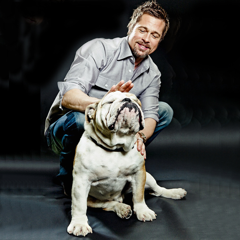 One of the greatest celebrity alive spend a lot of time with his English Bulldog