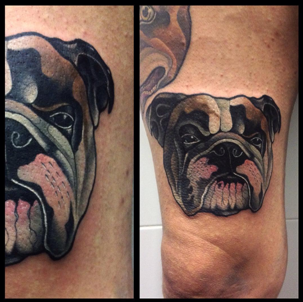 English Bulldog tattoo idea on arm