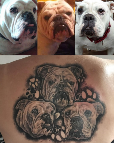 Three english bulldogs tattoo