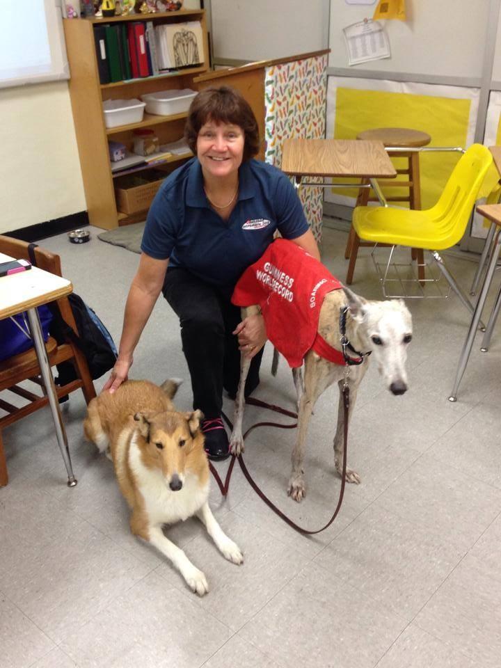Cindy greyhound on career day