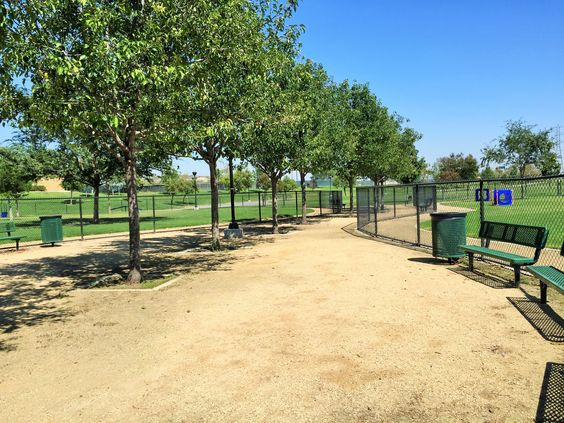 Know your parks near your house so you can walk your dog safely