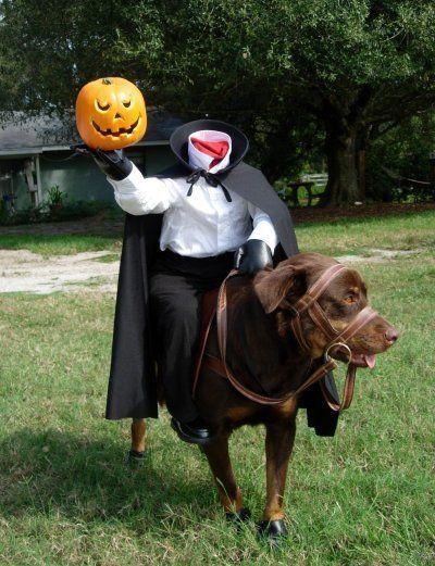 Funny pet Halloween Costume