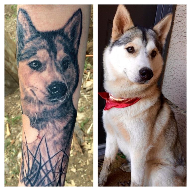 Husky portrait tattoo