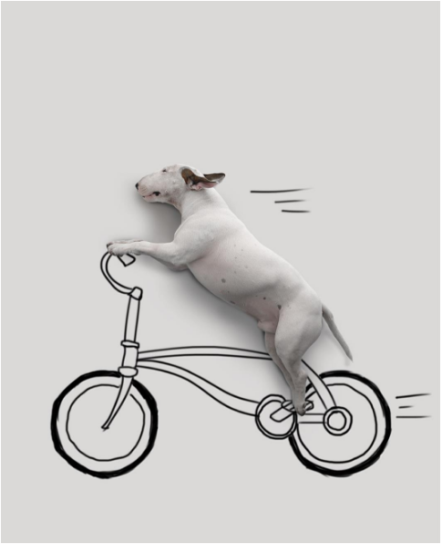 Jimmy riding a bicycle