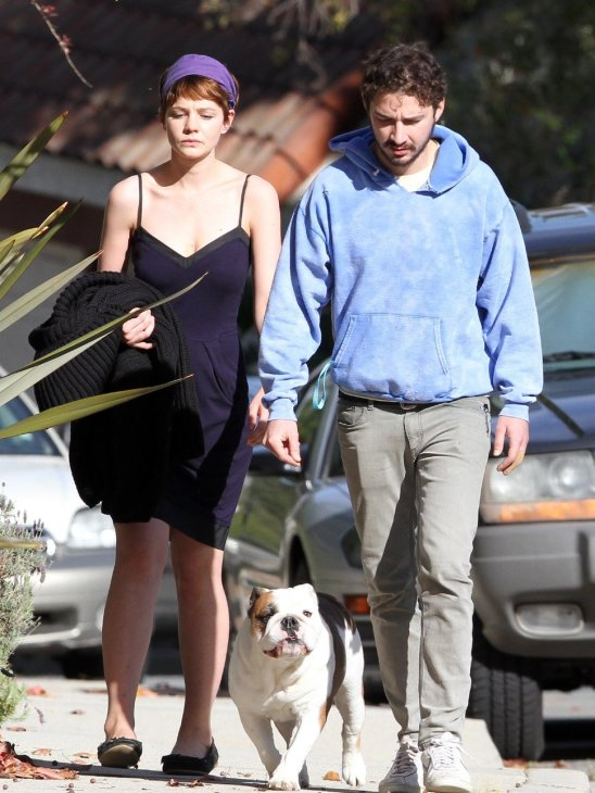 Cutest hollywood couple with their english bulldog
