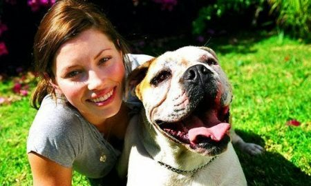 Beautiful actress and model Jessica Biel has a gorgeous English Bulldog
