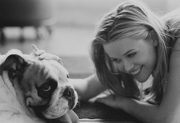 Beautiful actress Reese Witherspoon loves English Bulldogs