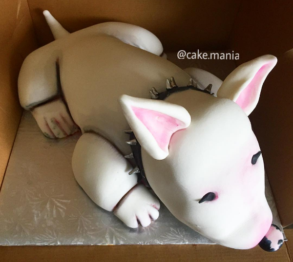 Beautiful bull terrier cake