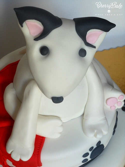 Bull Terrier Cake for your lovely pet