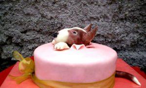 Bull Terrier beautiful birthday cake