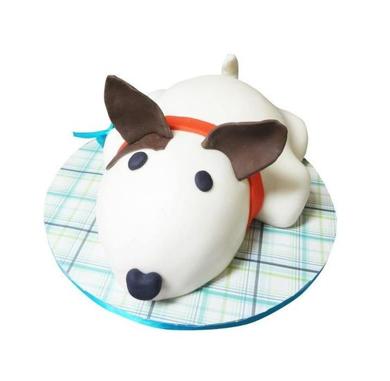 Birthday cake idea for your pet