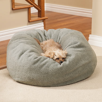 Invest in a very good bed for your dog, so he won't be cold during winter
