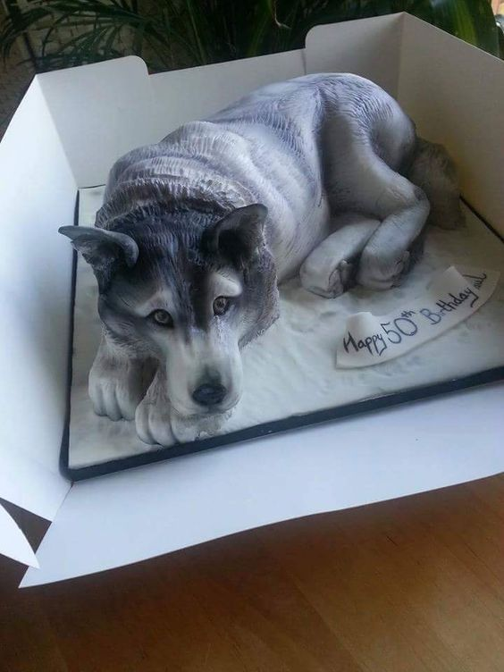 Amazing cake in the shape of a husky