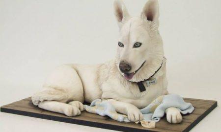 Mesmerising cake design in the shape of white husky