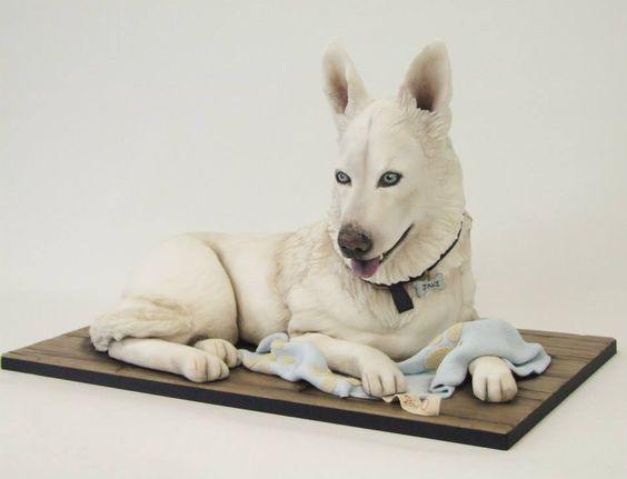 Mesmerising cake design in the shape of white husky