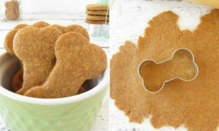 Peanut butter DIY dog treats for your pet