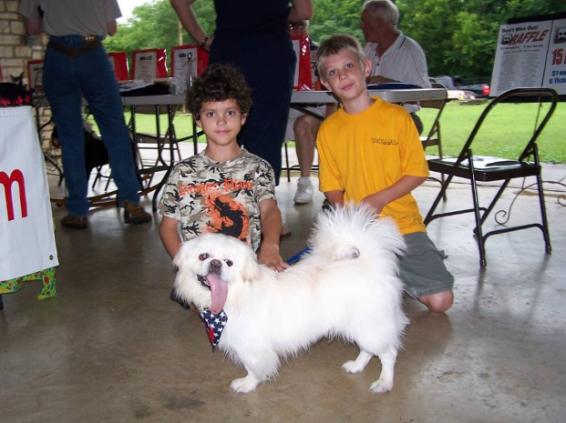 This dog is adored by children