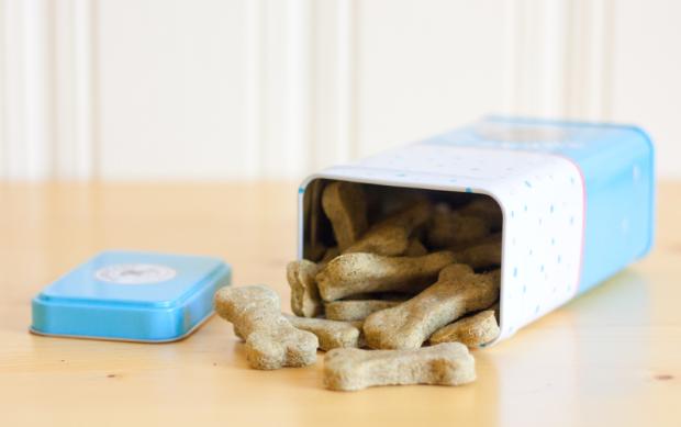 Vegan DIY treat for your dog