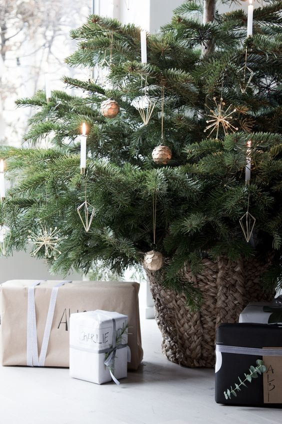 Make sure you set up your Christmas tree safely so your pet won't get injured