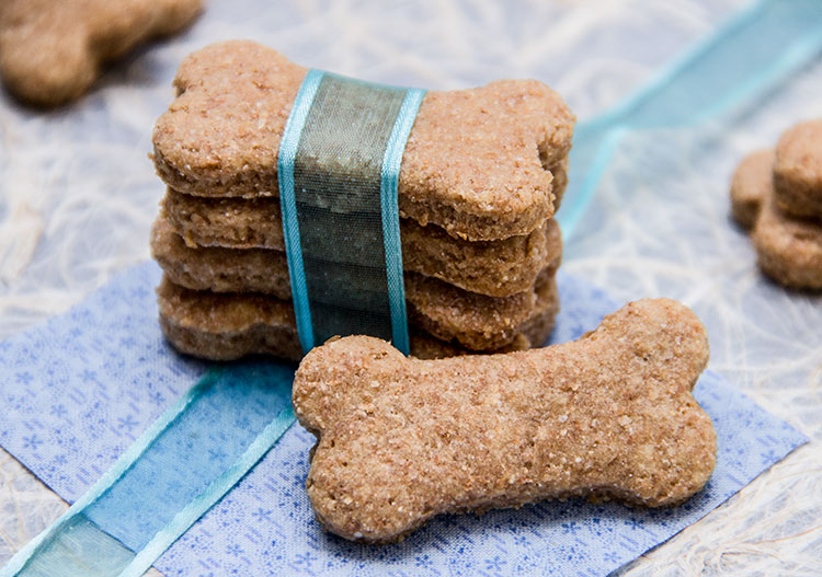 Have fun bacing some treats for your dog