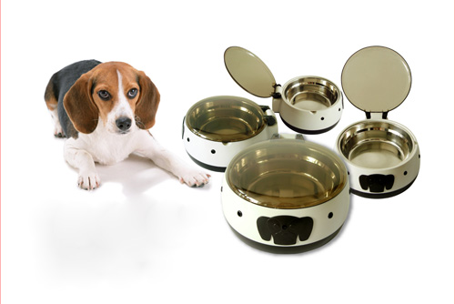 Dog bowl with lid so your dog's food keeps fresh