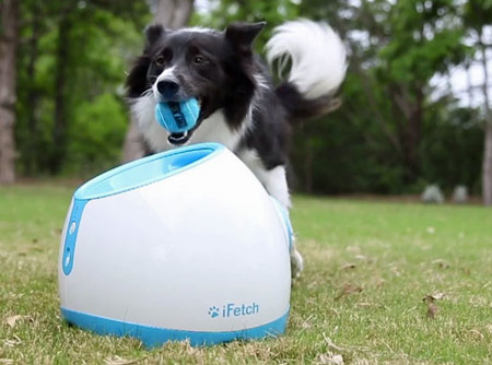 Tennis ball launcher is a great gift idea for your dog