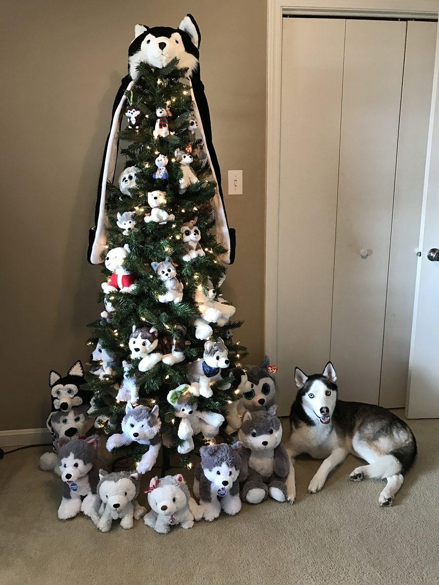 The most awesome husky Christmas tree