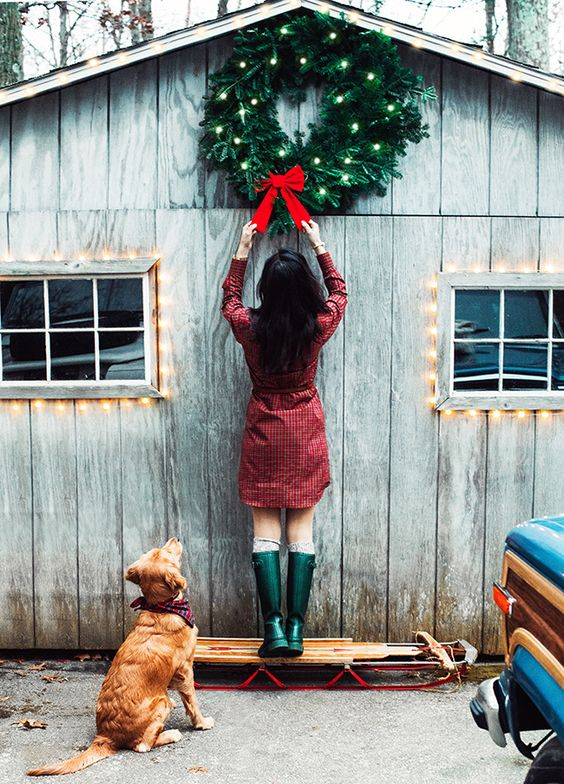Dogs tend to eat mistletoe and if they do, they will get poisoned