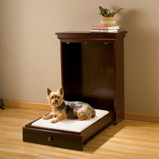 Short on space? Gift your dog a murphy bed