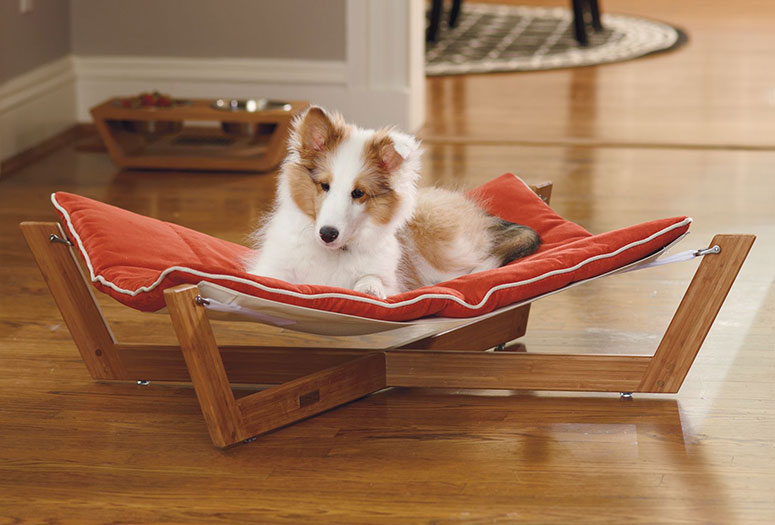 Dogs hammock are comfortable and look good