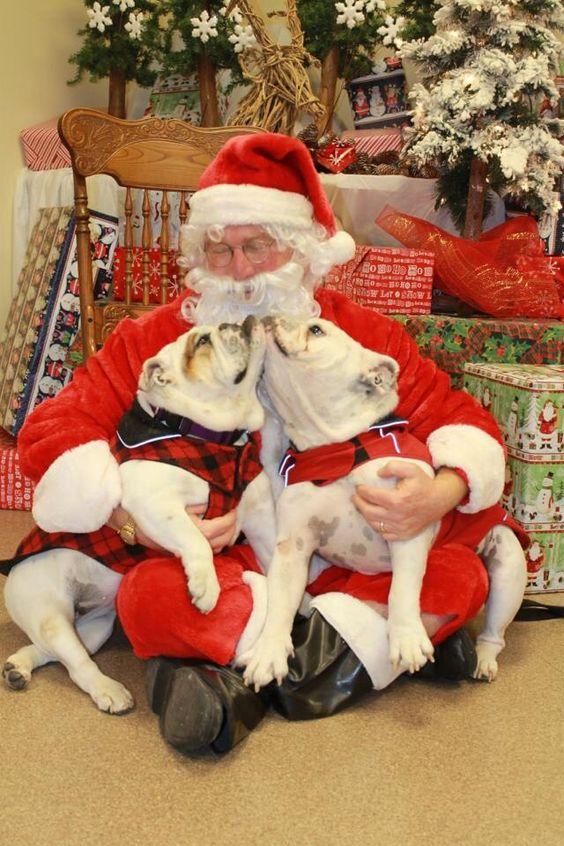 Merry Christmas everyone !!!