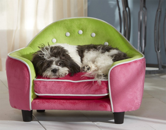 Pet sofa is e great luxury gift for your dog