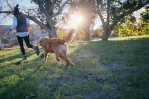 5 Essential Dog Care Tips to Keep Your Pet Happy